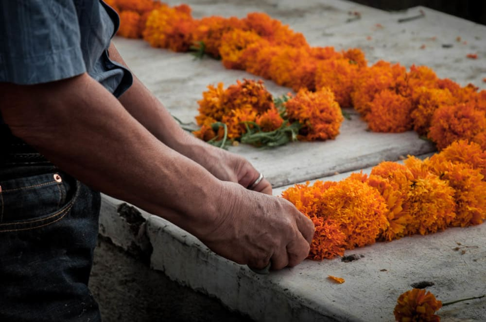 Graves are carefully cleaned and redecorated each year. The afternoons of November 1 and 2 are spent watering and putting fresh plants are put into the ground, repainting and constructing the altar. In this photo a man arranges marigolds on a grave in the cemetery in Ajijic, Jalisco. You start to see marigolds for sale everywhere in the weeks leading up to the Day of the Dead. Their sweet scent is said to help guide the dead to their altar on the night of November 2.