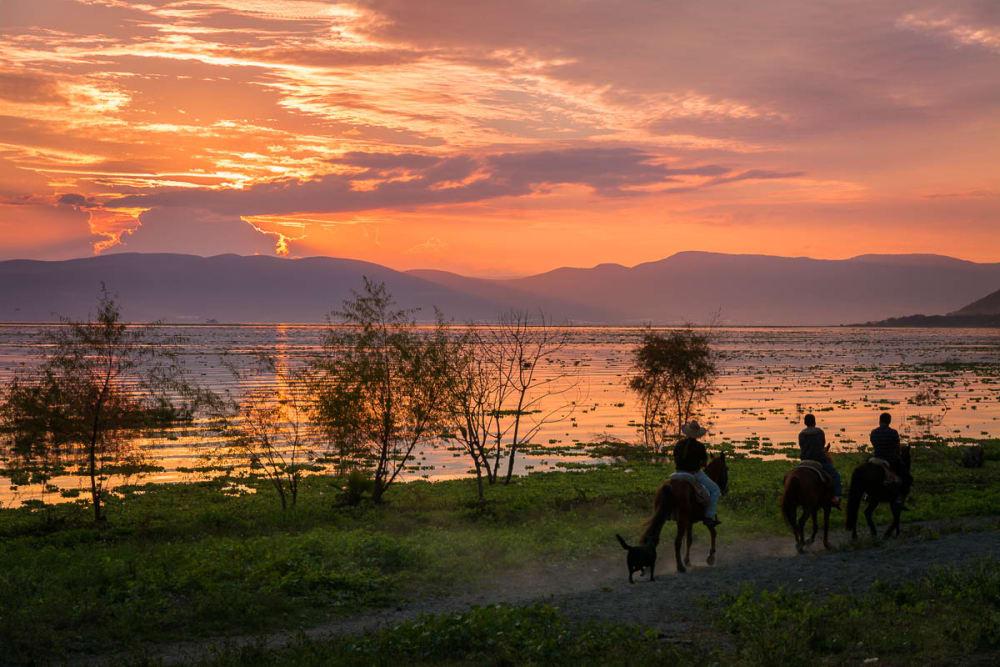 Horses along the lake.