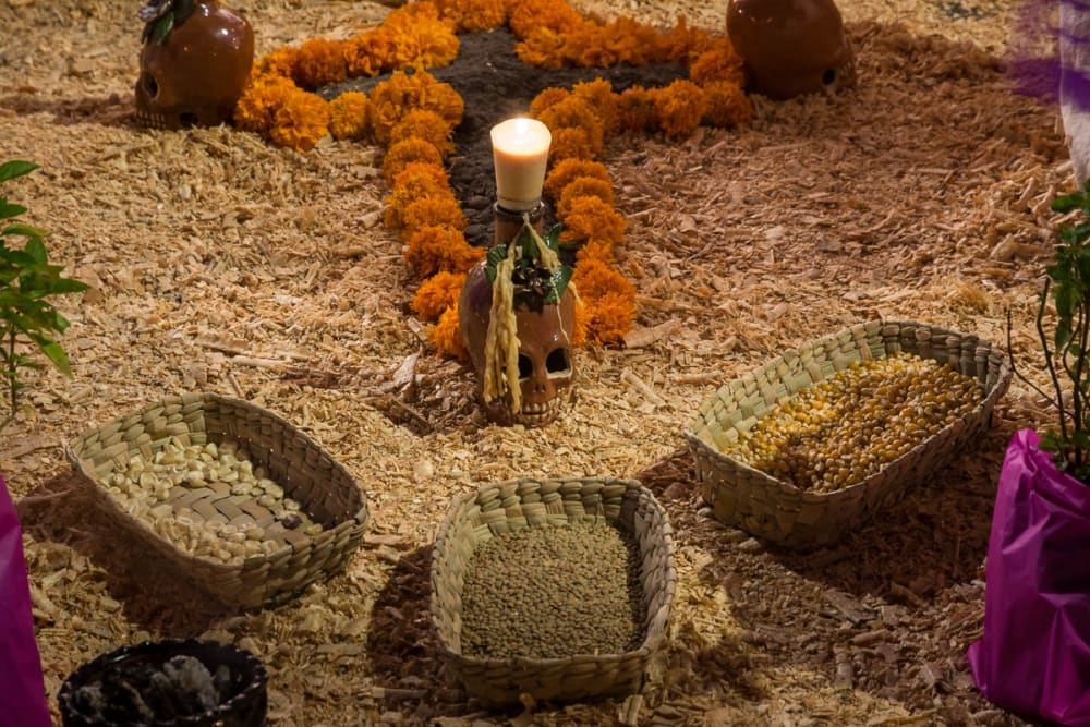 Seeds and grains left on an ofrenda on a Day of the Dead altar in Jalisco, Mexico.
