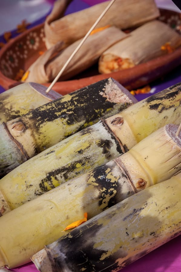 Sugarcane on the Day of the Dead