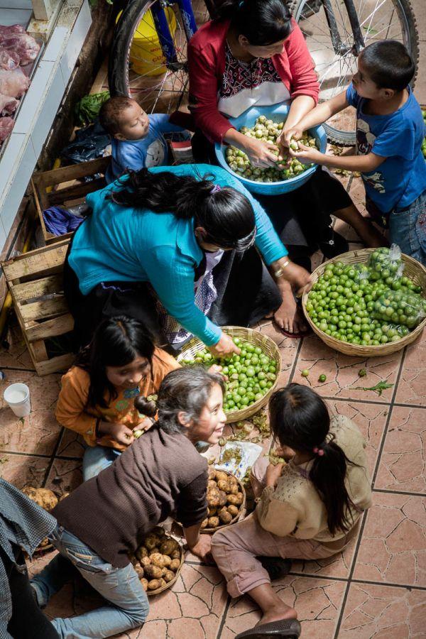 A family selling tomates verdes (tomatillos) in the mercado municipal in San Cristóbal de las Casas, Chiapas, Mexico