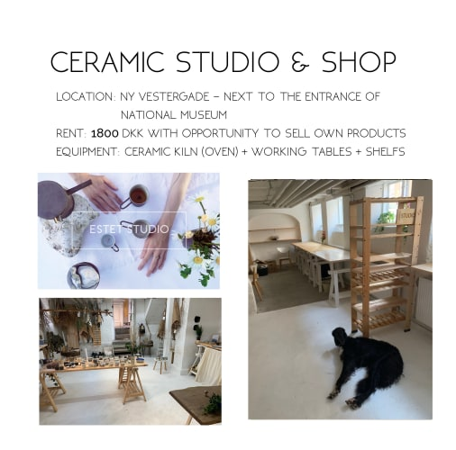 Ceramics Studio in KBH K looking for members