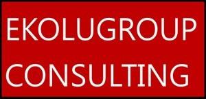 EkoluGroup Consulting