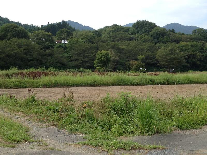遠くにヨガジィ村