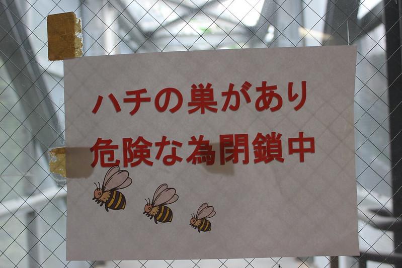 白馬ジャンプ競技場 ハチの巣ありの張り紙