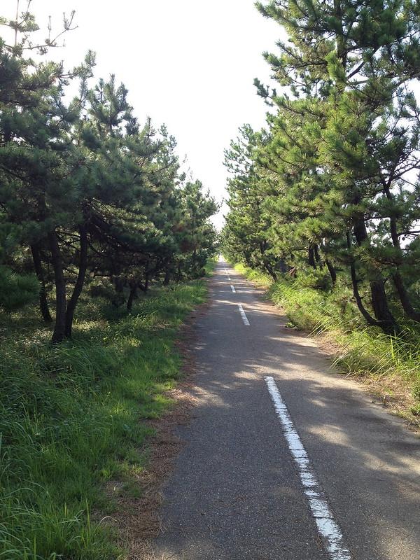 海沿いの道で富山へ その5