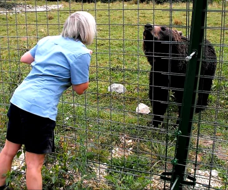 having a chat with a bear