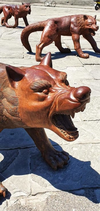wooden wolves