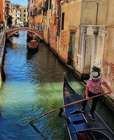 a gondolier in action in venice