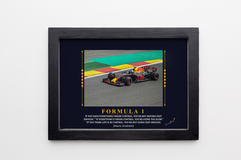 Formula One Mario Andretti