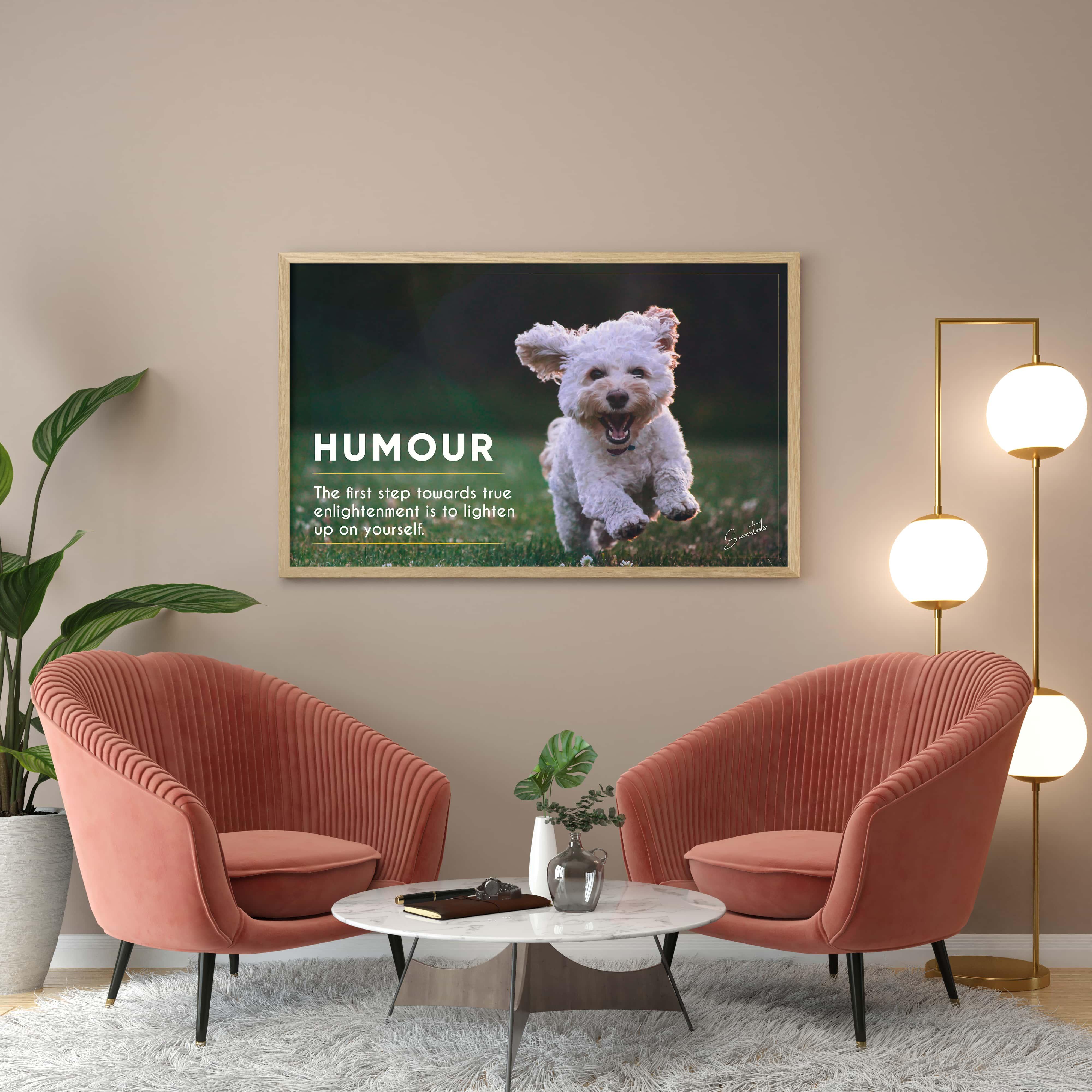 Framed Motivational Poster (Humour)