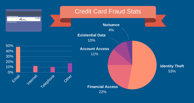 Credit card fraud stats