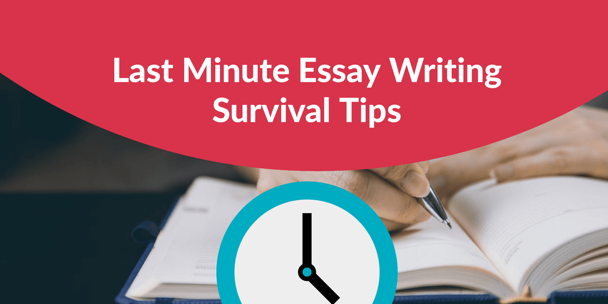 Essay Writing Survival Tips