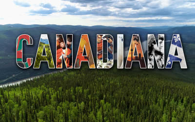 Episode 441 Ashley Brook & Adam Bunch & Canadiana