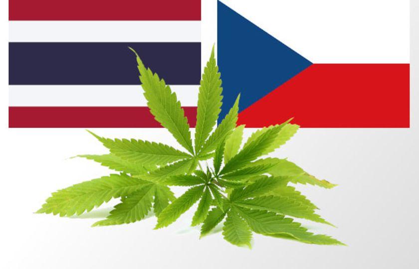 Thajsko legalizovalo léčebné konopí, zkoumat ho bude s českou pomocí
