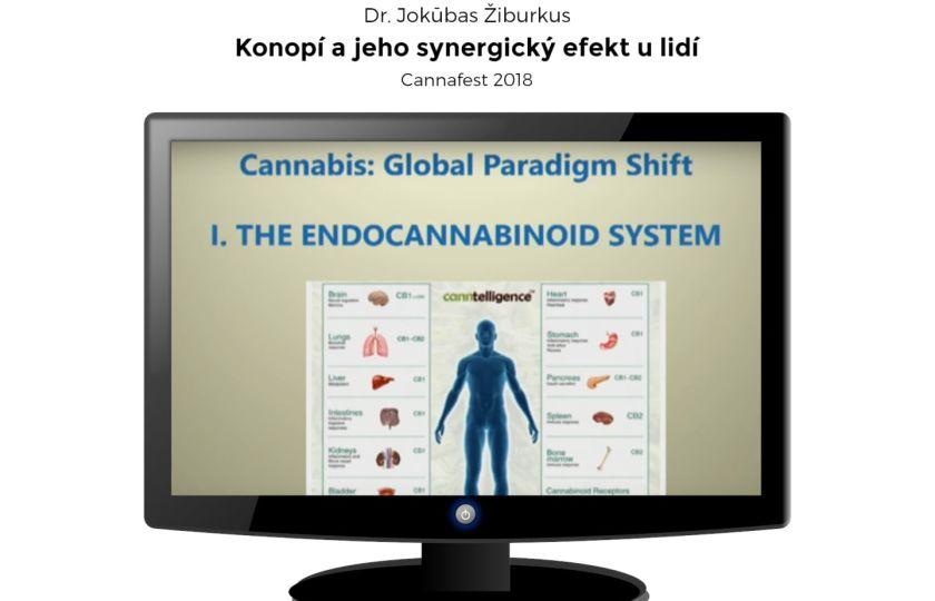 Konopí a jeho synergický efekt u lidí | Dr. Jokūbas Žiburkus