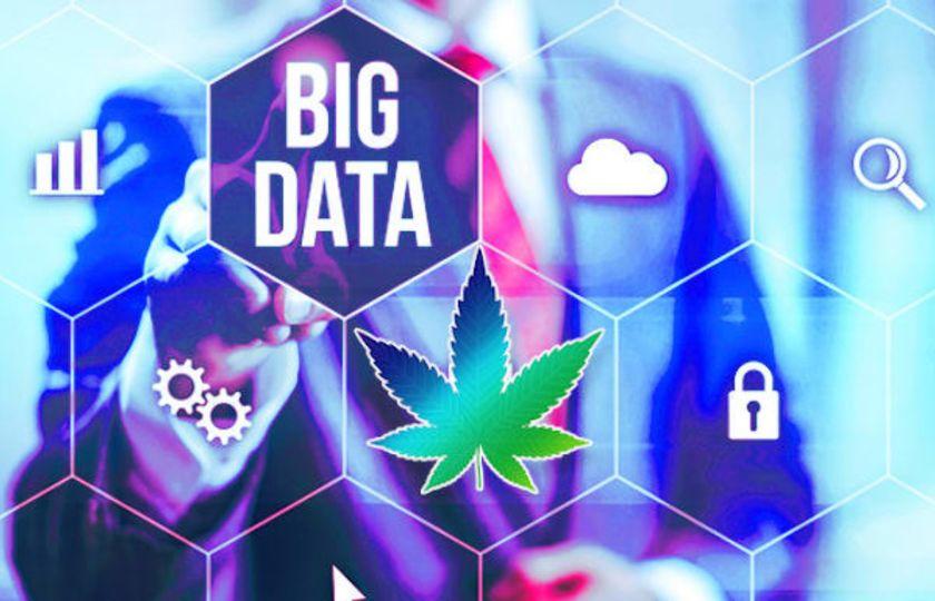 Ani konopný průmysl se bez AI a Big Data neobejde