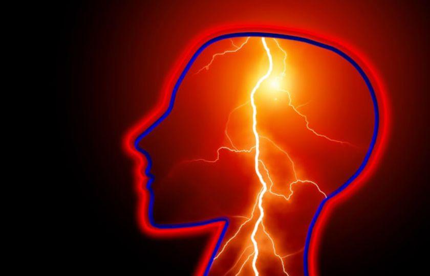 Kanabidiol CBD snižuje výskyt záchvatů a související behaviorální komorbidity u řady zvířecích modelů se záchvaty a epilepsií