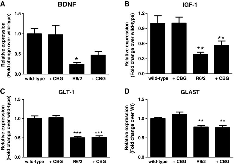 CBG a Huntingtonova choroba - odezvy kanabigerolu pro další markery BDNF, IGF-1, GLT-1, GLAST