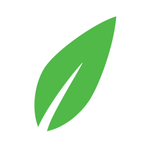 Green leaf representing the Celina Insurance Logo