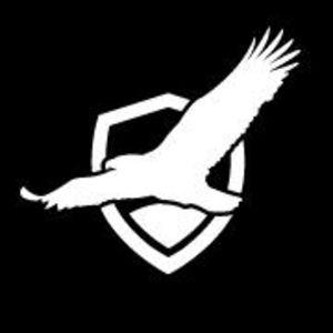 a bird silhouette, pekin insurance logo