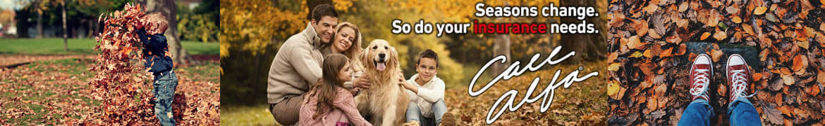 A couple with one son and daughter and a golden retriever dog, Alfa Insurance - Life is complex, but insurance shouldn't be.