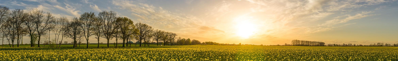 The sun shining over a farmland - mutual of enumclaw insurance company banner