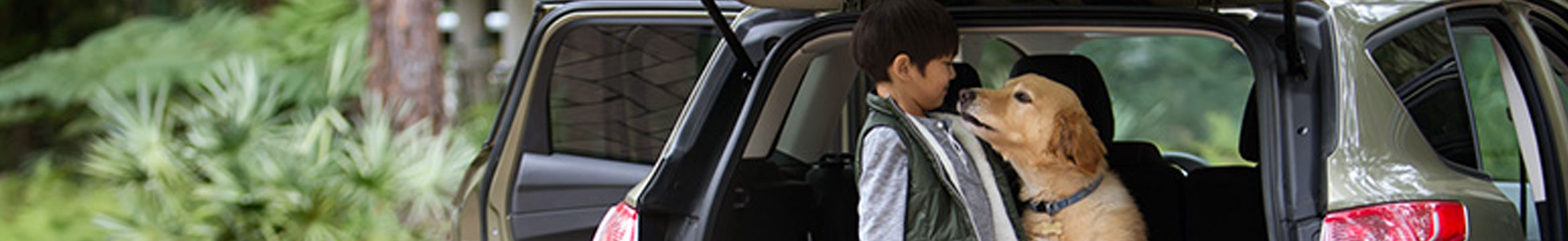 A child and a dog in a car, Allied Insurance