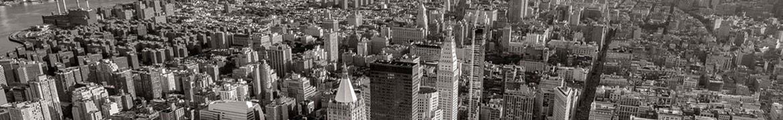 Lemonade Insurance Reviews - Company Banner of City Skyline