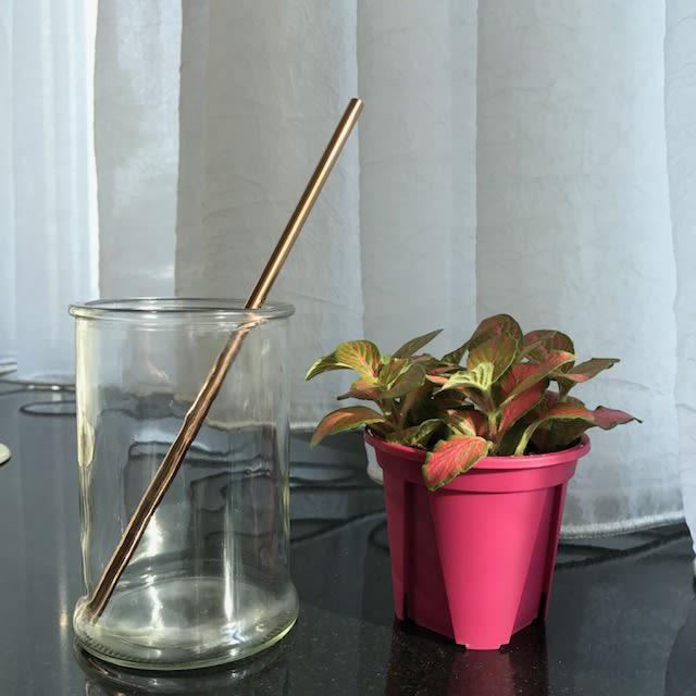 Stainless Steel Straw – Rose Gold Regular (304 grade)