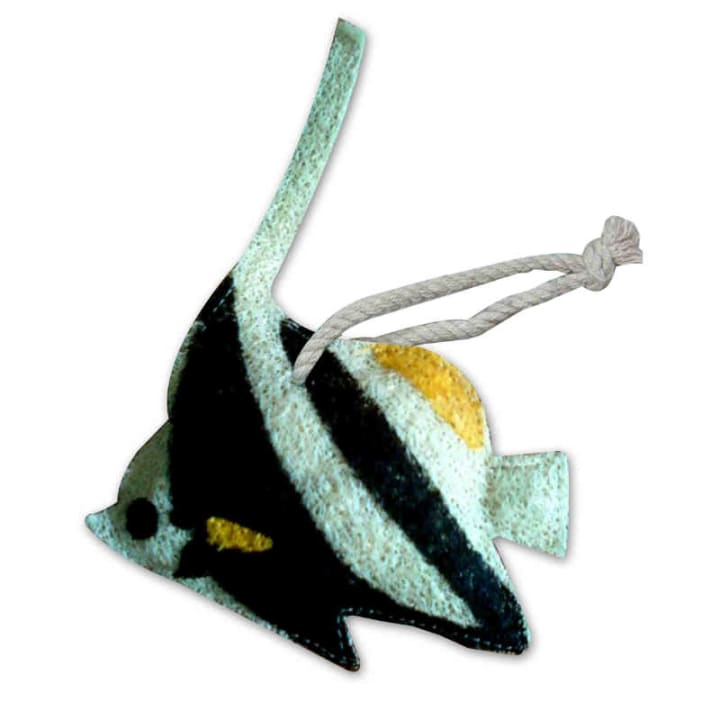 Angelfish Loofah