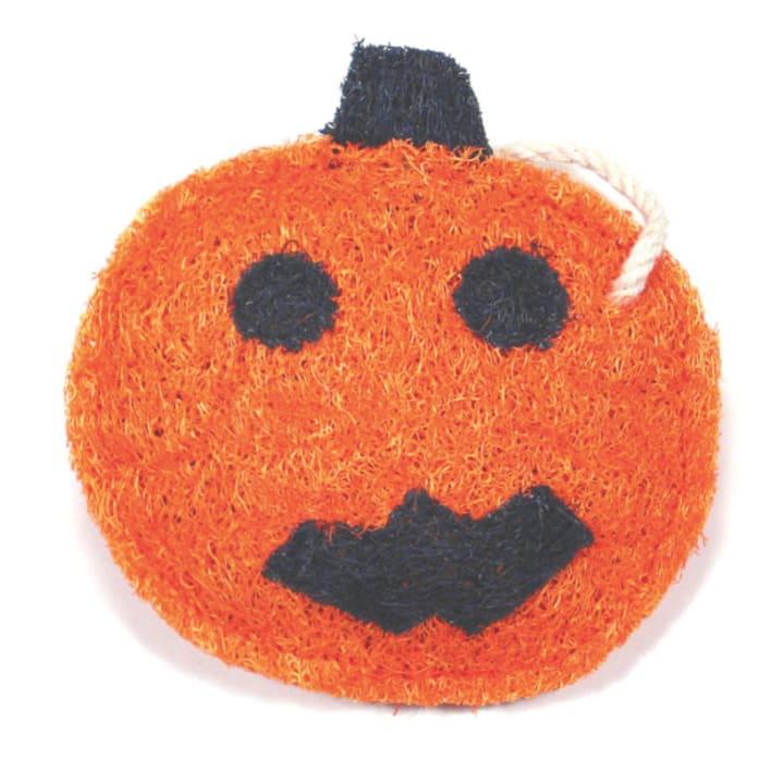 Pumpkin Loofah