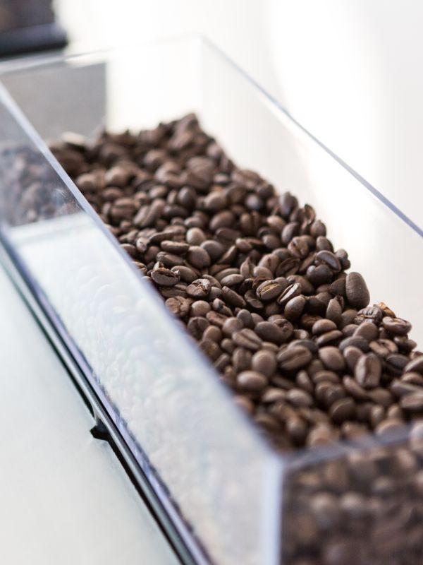 Aequator Ecuador - Kaffemaskin - beholder