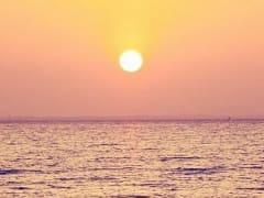 Погибли около 1 миллиарда морских животных: последствия аномальной жары в Канаде
