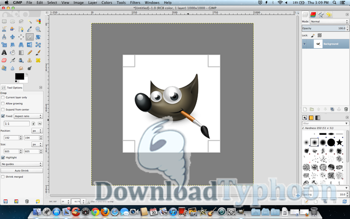 Gimp for Mac full screenshot