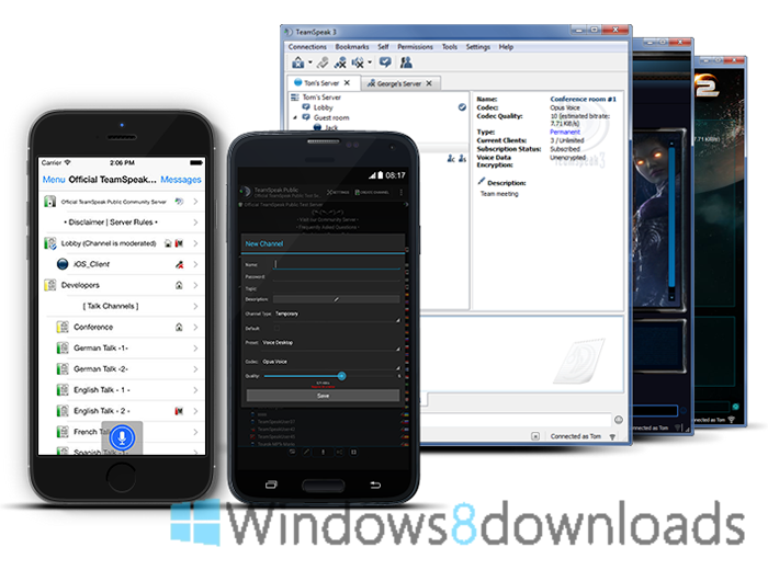 Full Teamspeak screenshot