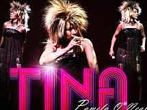 Doppelgänger: Tina Turner