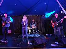 BLUEWATER Rock'n Blues Band