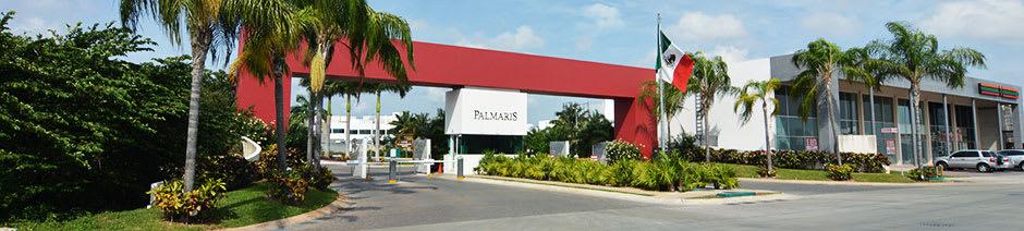 slide-palmaris