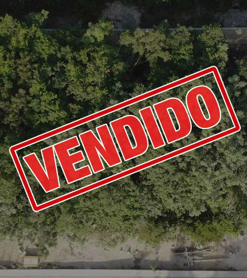 fachada_terreno_residencial_arbolada_cancun_copalsu59