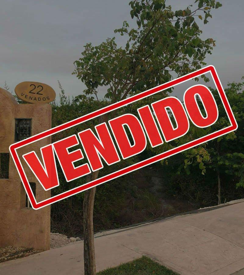 terreno residencial lagos del sol cancun venad22