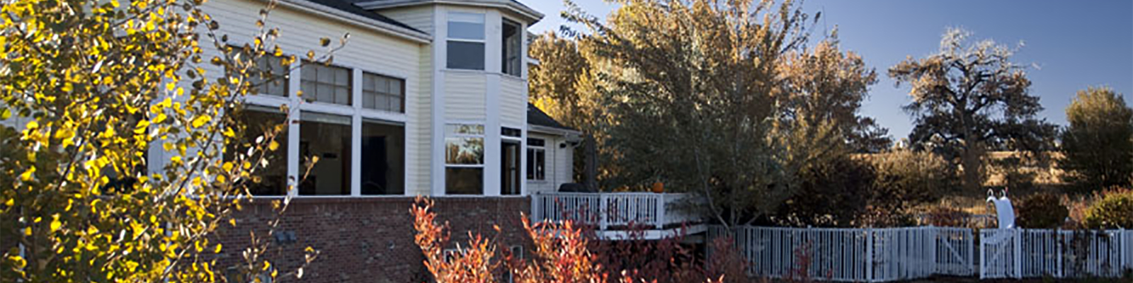 rose house home photo