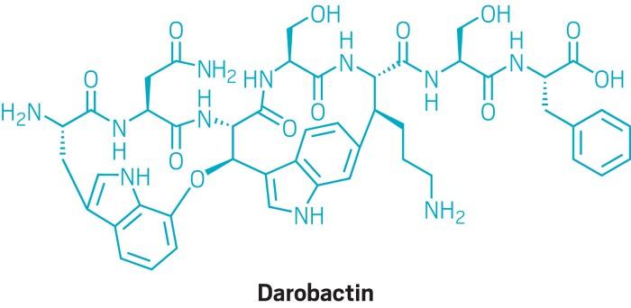 Darobactina apre la strada per una nuova classe di antibiotici contro i gram-negativi
