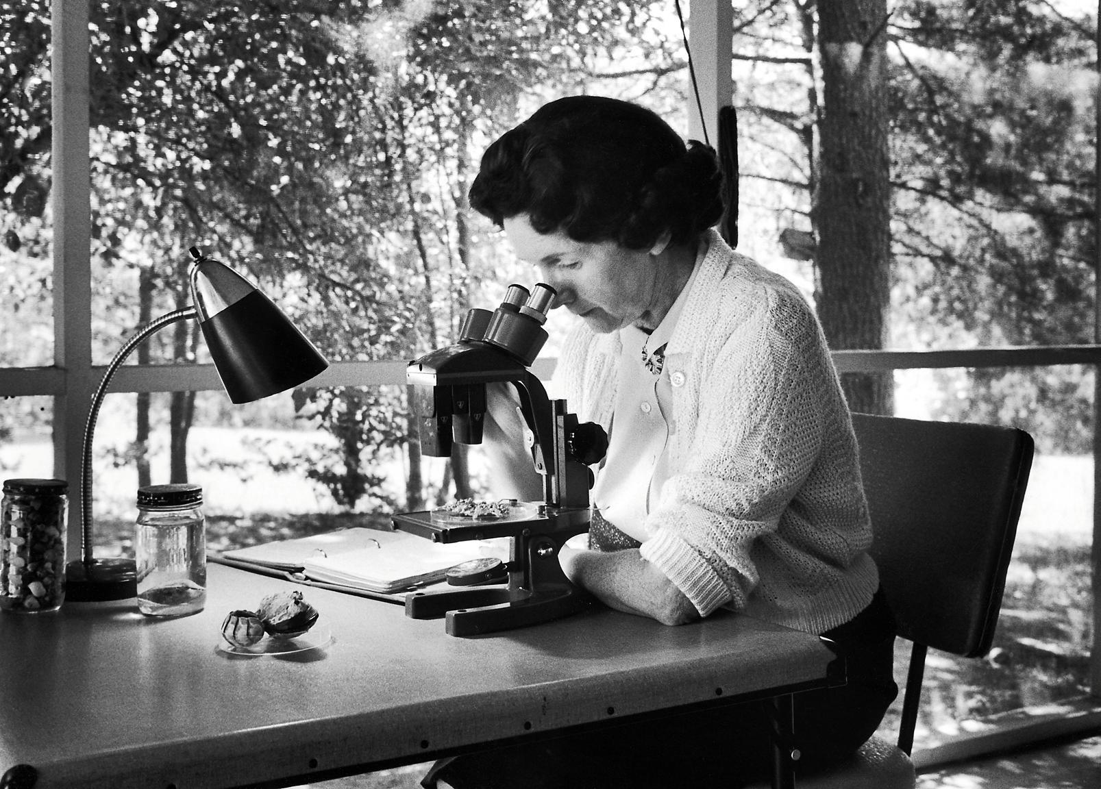Primavera silenziosa, la storia di Rachel Carson | Farmaceutica Younger