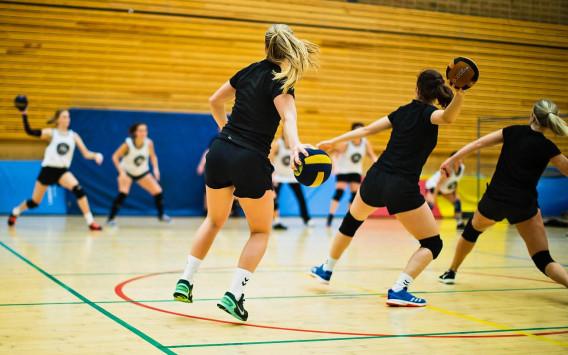 Stockholm Dodgeball Association