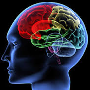 Best Neuro care