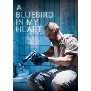 Bluebird 1578767784