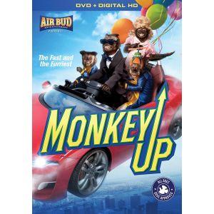 Monkeyup 1586090512