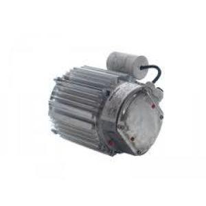 Motor 1602900303