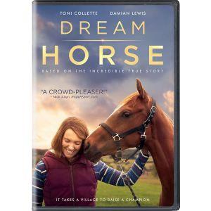 Dreamhorse 1629155045